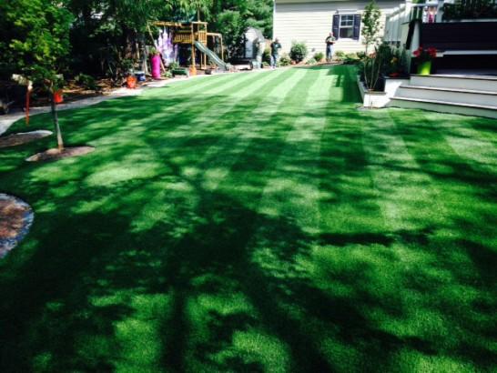 Artificial Grass Photos: Artificial Grass Carpet Driscoll, Texas Rooftop, Small Backyard Ideas