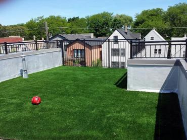 Artificial Grass Photos: Artificial Grass Carpet Lost Creek, Texas Design Ideas, Patio