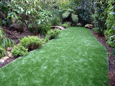 Artificial Grass Photos: Artificial Grass Carpet Sealy, Texas Home And Garden, Backyard Garden Ideas