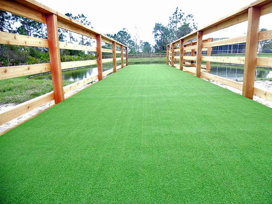 Artificial Grass Cinco Ranch, Texas Watch Dogs, Commercial Landscape artificial grass