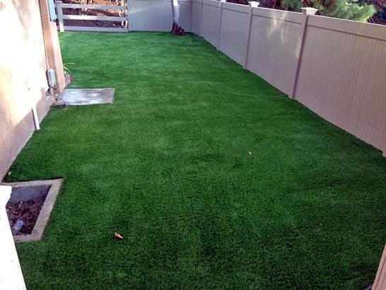 Artificial Grass Photos: Artificial Grass George West, Texas Dog Parks, Beautiful Backyards