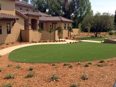 Artificial Grass Photos: Artificial Grass Installation Cottonwood Shores, Texas Landscaping Business, Small Front Yard Landscaping