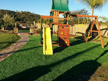 Artificial Grass Photos: Artificial Grass Installation Zuehl, Texas Landscape Ideas, Backyard Landscaping Ideas