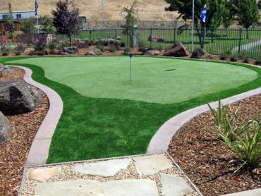 Artificial Grass Photos: Artificial Grass Rockport, Texas Office Putting Green, Backyards