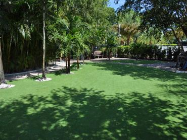 Artificial Grass Photos: Artificial Grass Volente, Texas Landscape Design, Commercial Landscape