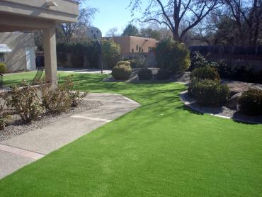 Artificial Grass Photos: Artificial Lawn Bigfoot, Texas Backyard Playground, Front Yard Landscape Ideas