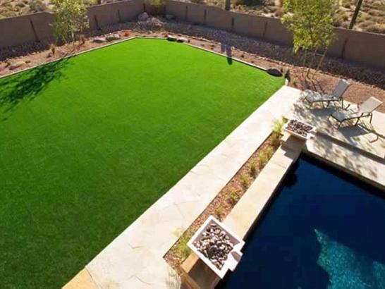 Artificial Grass Photos: Artificial Lawn Redwood, Texas Landscape Photos, Kids Swimming Pools