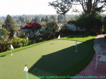 Artificial Grass Photos: Artificial Lawn Windcrest, Texas Diy Putting Green, Backyard Landscape Ideas