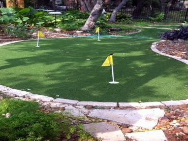 Artificial Grass Photos: Artificial Turf Gonzales, Texas Roof Top, Backyard Makeover