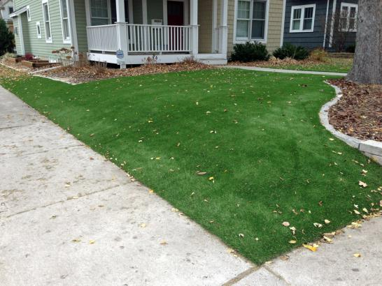Artificial Grass Photos: Artificial Turf Installation Alamo Heights, Texas Landscape Design, Front Yard Landscape Ideas