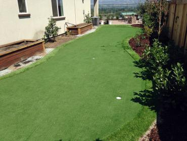 Artificial Grass Photos: Artificial Turf Installation Coyote Acres Colonia, Texas Putting Green Flags, Backyard Design