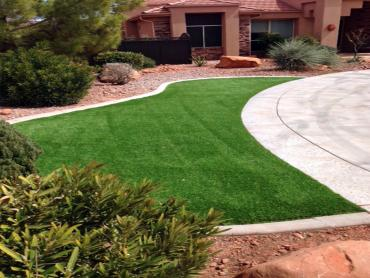 Artificial Grass Photos: Artificial Turf Lake City, Texas Roof Top, Front Yard