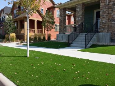 Artificial Turf Saint Hedwig, Texas Garden Ideas, Front Yard Ideas artificial grass