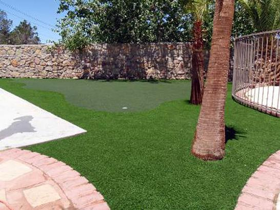Artificial Grass Photos: Artificial Turf Tuleta, Texas Lawn And Landscape, Small Backyard Ideas