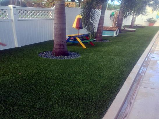Artificial Grass Photos: Artificial Turf Weinert, Texas Landscape Ideas, Backyard