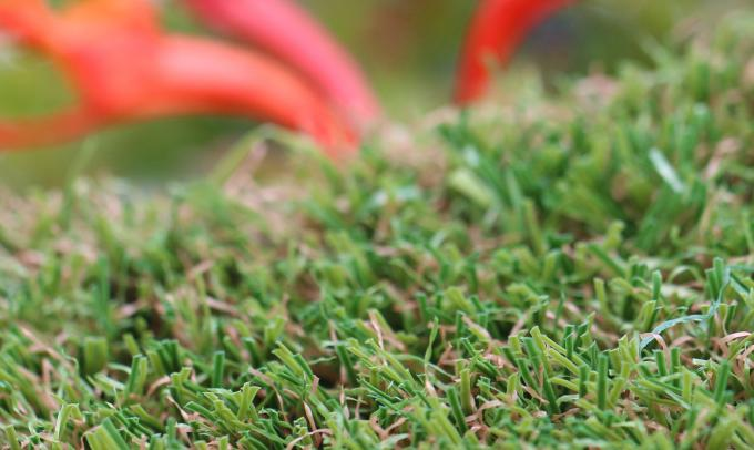 Natural Looking Synthetic Turf Grass