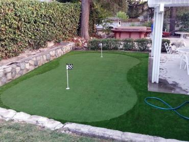 Artificial Grass Photos: Best Artificial Grass Marlin, Texas Backyard Playground, Backyard Landscaping