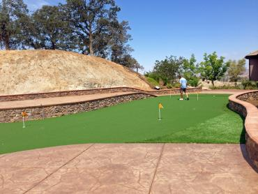 Artificial Grass Photos: Best Artificial Grass Rosita South, Texas Rooftop, Backyard Makeover