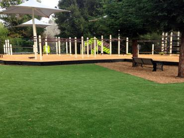 Artificial Grass Photos: Best Artificial Grass Temple, Texas Athletic Playground, Backyard