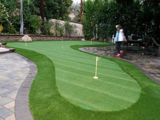 Artificial Grass Photos: Fake Grass Bear Creek, Texas Paver Patio, Backyard Landscaping Ideas