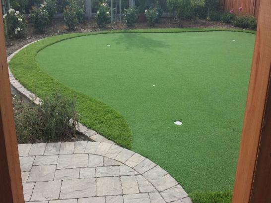 Artificial Grass Photos: Fake Grass Bulverde, Texas Backyard Putting Green, Backyard Landscaping