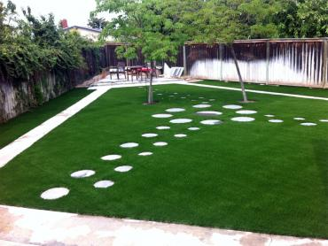Fake Grass Carpet Bee Cave, Texas Garden Ideas, Backyard Designs artificial grass