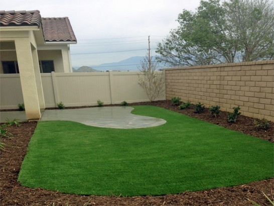 Artificial Grass Photos: Fake Grass Carpet Edna, Texas Home And Garden, Backyard Makeover