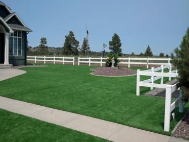 Artificial Grass Photos: Fake Grass Carpet Industry, Texas Garden Ideas, Front Yard Landscape Ideas