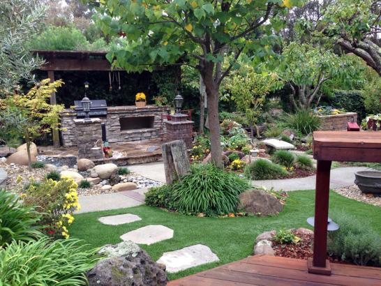 Artificial Grass Photos: Fake Grass Carpet Lytle, Texas Landscaping, Backyard Landscaping