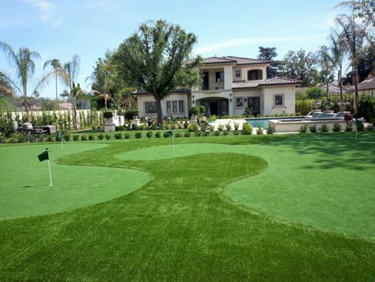Artificial Grass Photos: Fake Grass Carpet Nordheim, Texas How To Build A Putting Green, Front Yard Design