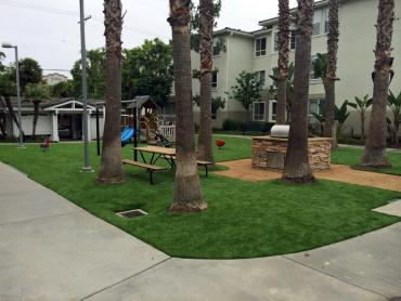 Artificial Grass Photos: Fake Grass Carpet Uhland, Texas Landscaping, Commercial Landscape