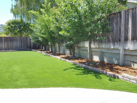 Artificial Grass Photos: Fake Grass Corpus Christi, Texas Garden Ideas, Backyard Designs