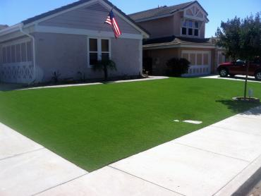 Artificial Grass Photos: Fake Grass Elgin, Texas Gardeners, Landscaping Ideas For Front Yard