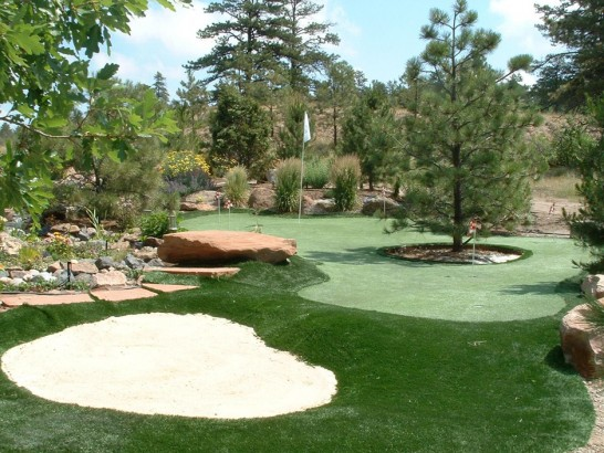 Artificial Grass Photos: Fake Grass Vanderbilt, Texas Home Putting Green, Backyard Landscaping Ideas