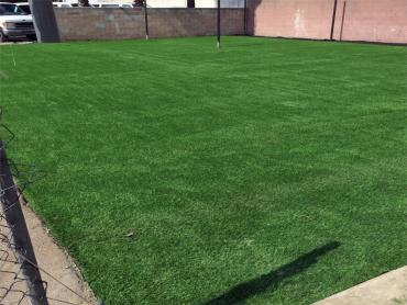 Artificial Grass Photos: Fake Lawn Benavides, Texas High School Sports