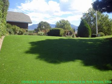 Fake Lawn Kirby, Texas Lawns, Backyard artificial grass