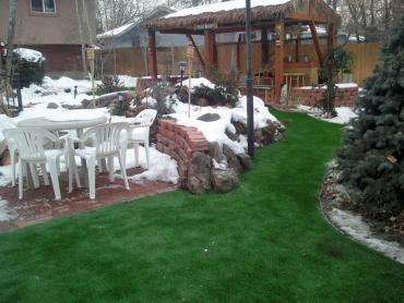 Artificial Grass Photos: Fake Lawn Lytle, Texas Landscape Ideas, Backyard