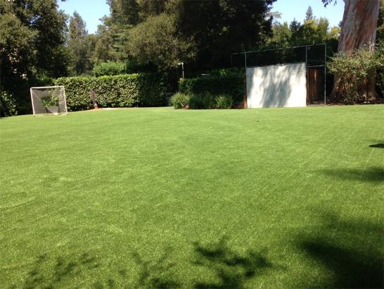 Artificial Grass Photos: Fake Lawn Robinson, Texas High School Sports, Backyard Ideas