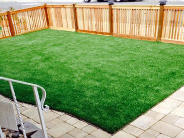 Artificial Grass Photos: Fake Turf Tierra Grande, Texas Landscape Photos, Backyard Landscaping