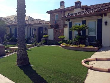 Artificial Grass Photos: Faux Grass Anderson Mill, Texas Roof Top, Front Yard Landscaping Ideas