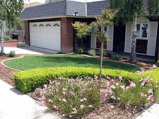 Artificial Grass Photos: Faux Grass Carrizo Springs, Texas City Landscape, Front Yard Landscape Ideas