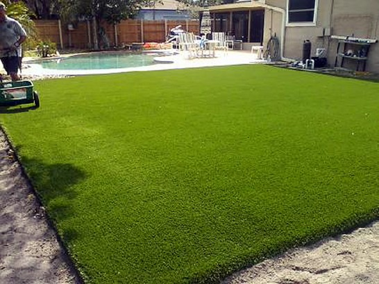 Artificial Grass Photos: Faux Grass Loma Linda Colonia, Texas Backyard Playground, Swimming Pools