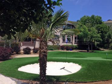 Artificial Grass Photos: Faux Grass Poth, Texas Lawns, Front Yard Design