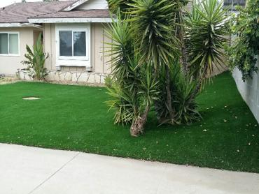Artificial Grass Photos: Faux Grass South Fork Estates, Texas Backyard Playground, Small Front Yard Landscaping