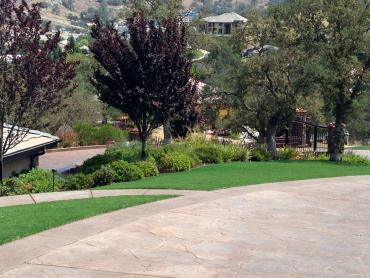 Artificial Grass Photos: Grass Carpet Eldorado, Texas Landscape Design, Front Yard Landscaping
