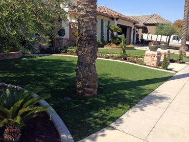 Artificial Grass Photos: Grass Carpet Knippa, Texas City Landscape, Front Yard Design