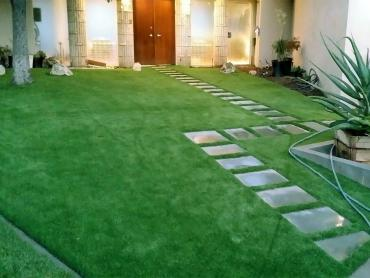 Artificial Grass Photos: Grass Carpet Lake View, Texas Lawns, Front Yard Landscaping Ideas