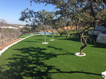 Artificial Grass Photos: Grass Carpet Lamar, Texas Landscaping, Beautiful Backyards