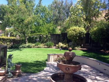 Artificial Grass Photos: Grass Carpet Mountain City, Texas Landscape Design, Backyard Design