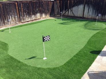 Artificial Grass Photos: Grass Carpet Nixon, Texas Office Putting Green, Backyards